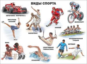 виды спорта